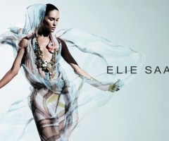 http://www.fashiongonerogue.com/elie-saab-spring-2011-campaign-erin-wasson-willy-vanderperre/