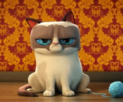 http://www.7ual.com/grumpy-cat-wallpaper-for-android-09-1205.html
